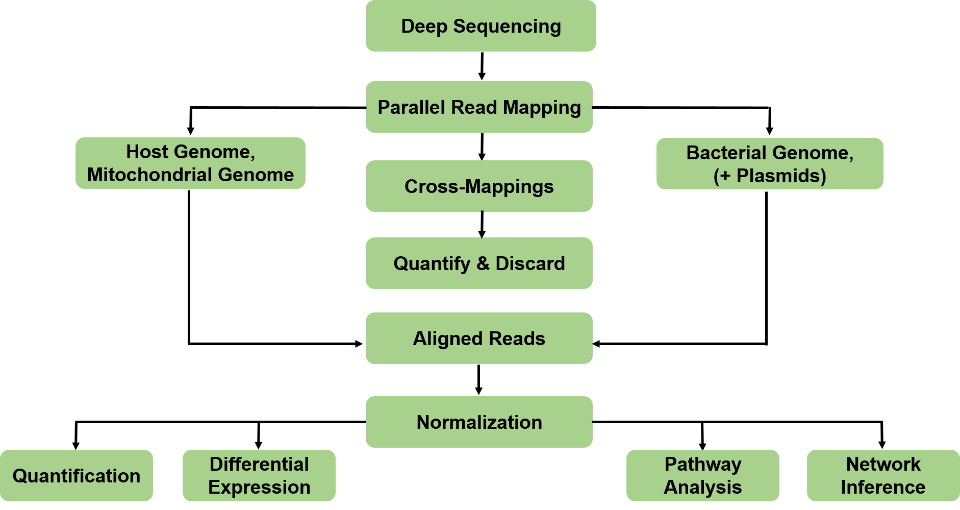 Dual RNA Sequencing