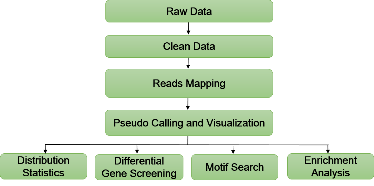 Pseudo Sequencing