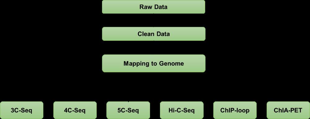 Chromosome Conformation Capture Sequencing (3C-Seq)