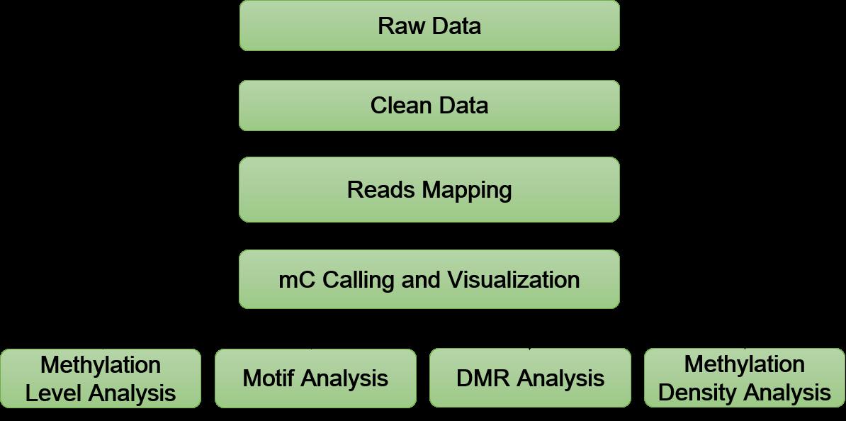 m5C Profiling