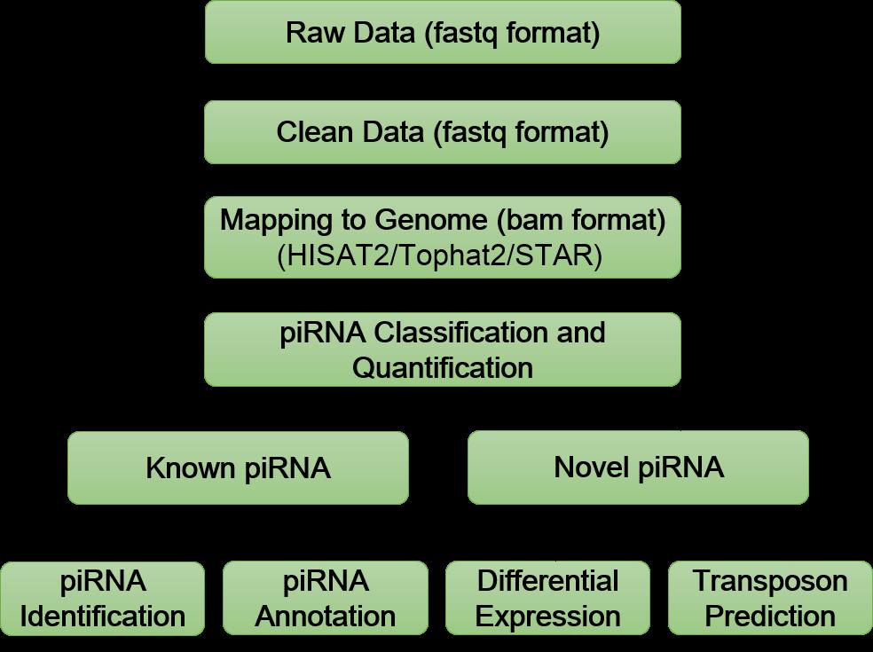 Bioinformatics Analysis Pipeline
