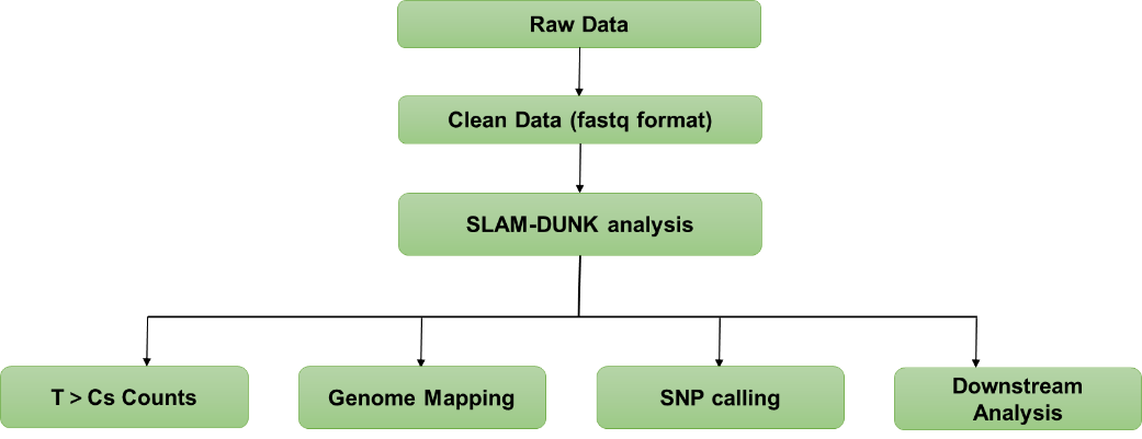 SLAM Sequencing